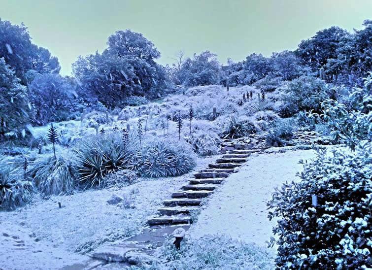 de la neige au rayol canadel